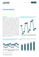 China Food Sector Report 2016 4th Quarter -  Page 19