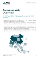 Emerging Asia M&A Overview Report H1 2017 -  Page 3