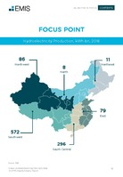 China Hydropower Sector Report 2017-2018 -  Page 13