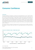 Turkey Consumer Goods & Retail Sector Report 2018/2019 -  Page 20