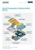 Mexico Consumer Goods and Retail Sector Report 2018/2019 -  Page 25
