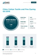 China Textile Sector Report 2017 4th Quarter -  Page 13