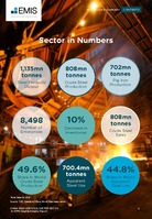 China Iron and Steel Sector Report 2017 3rd Quarter -  Page 6