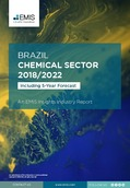 Brazil Chemical Sector Report 2018/2022 - Page 1