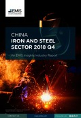 China Iron and Steel Sector Report 2018 4th Quarter - Page 1
