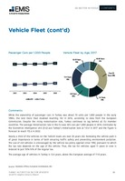 Turkey Automotive Sector Report 2018/2019 -  Page 19