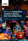 Mexico Consumer Goods and Retail Sector Report 2019/2020 - Page 1