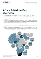 Africa and the Middle East M&A Overview Report H1 2019 -  Page 3