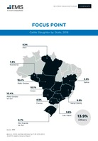 Brazil Food and Beverage Sector Report 2019/2023 -  Page 60