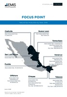 Mexico Oil and Gas Sector Report 2020-2021 -  Page 67