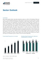 India Steel Sector Report 2020 3rd Quarter -  Page 17