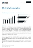 Mexico Electric Power Sector Report 2020/2021 -  Page 20