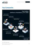 India Software and IT Sector Report 2020-2024 -  Page 29
