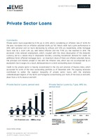 Argentina Banking Sector Report 2020/2021 -  Page 28