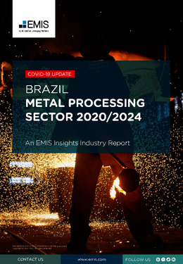 Brazil Metal Processing Sector Report 2020/2024 - Page 1