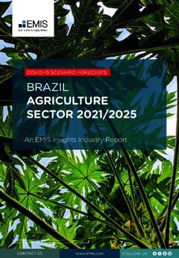Brazil Agriculture Sector Report 2021-2025 - Page 1