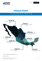Mexico Agriculture Sector Report 2020/2021 -  Page 51
