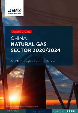 China Natural Gas Sector Report 2020-2024 - Page 1