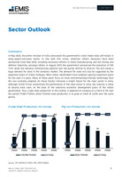India Steel Sector Report 2021 2nd Quarter -  Page 17