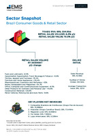 Brazil Consumer Goods and Retail Sector Report 2020 4th Quarter -  Page 7
