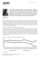 India Consumer Goods and Retail Sector Half-Annual Update - April 2021 -  Page 2